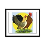 Red Quill Chickens Framed Panel Print