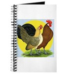 Red Quill Chickens Journal