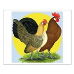 Red Quill Chickens Small Poster