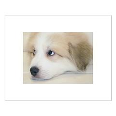 Pretty Puppy Posters