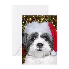 Christmas Shih Greeting Cards