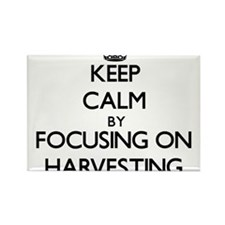 Keep Calm by focusing on Harvesting Magnets
