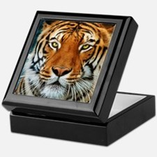 Tiger in Water Photograph Keepsake Box