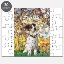 57-Spring-JRT3.png Puzzle