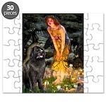 MIDEVE-Newfie-Blk2.png Puzzle