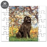SPRING-Newfie-Brown... Puzzle