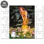 MIDEVE-Papi-6-Pixie.png Puzzle