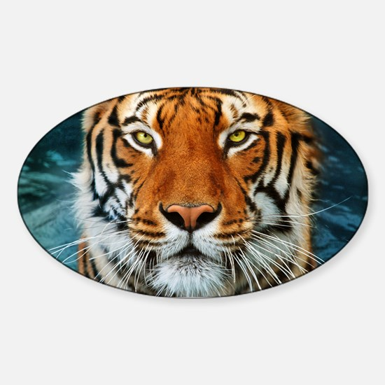 Tiger in Water Photograph Decal