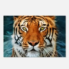 Tiger in Water Photograph Postcards (Package of 8)