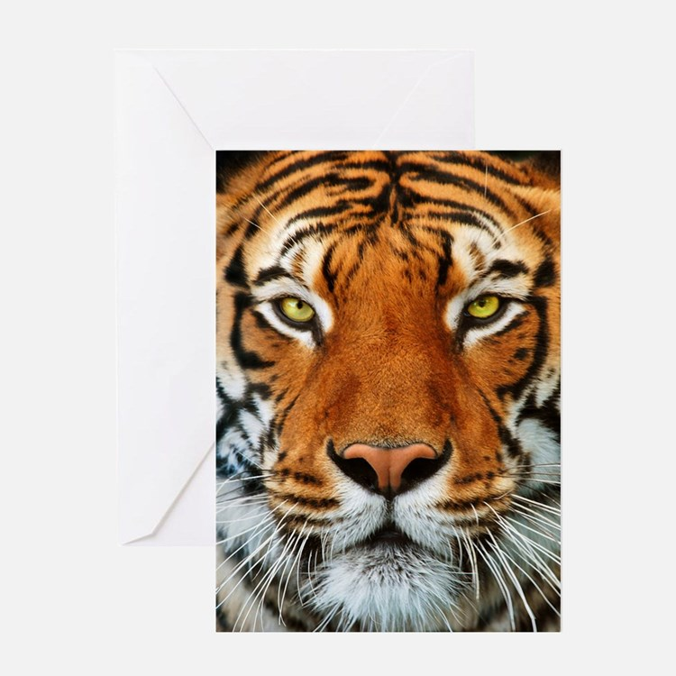 Tiger in Water Photograph Greeting Cards