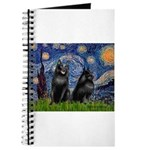 Schipperkees (two,5&6) - Starry Night.png Journal