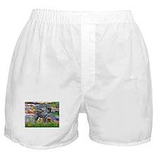 card-Lilies2-GSchnauzer-grey.PNG Boxer Shorts