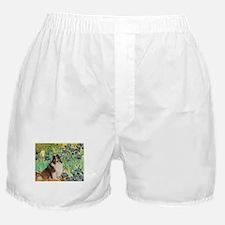 TR-Irisis-Sheltie-Spen.png Boxer Shorts