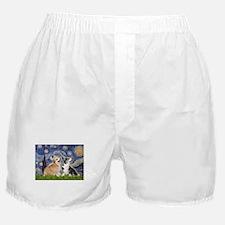 STARRY-Corgi-PAIR-Pem-Bicolor.png Boxer Shorts