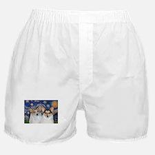 5x7-Starry-CorgiPairheads.png Boxer Shorts