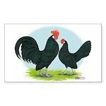 Black Dutch Bantams Rectangle Sticker