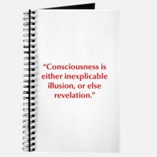 Consciousness is either inexplicable illusion or e