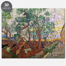 The Garden of St. Pauls Hospital at St. R - Puzzle
