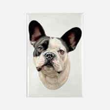 French Bulldog BW Bust Rectangle Magnet