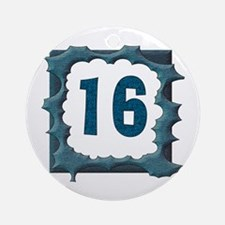 16th Birthday Gifts Ornament (Round)