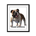 BULLDOG SMILES Framed Panel Print