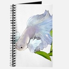 Dumbo Betta Snowy Journal