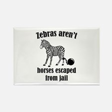 Zebras Aren't Horses Escaped From Jail Rectangle M
