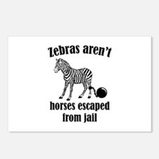 Zebras Aren't Horses Escaped From Jail Postcards (