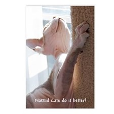 Nakkid Cat's do it better! Postcards (Package of 8