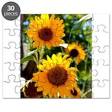 Sunflowers Old Town Albuquerque Puzzle
