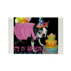 ITS MY BIRTHDAY Rectangle Magnet (10 pack)