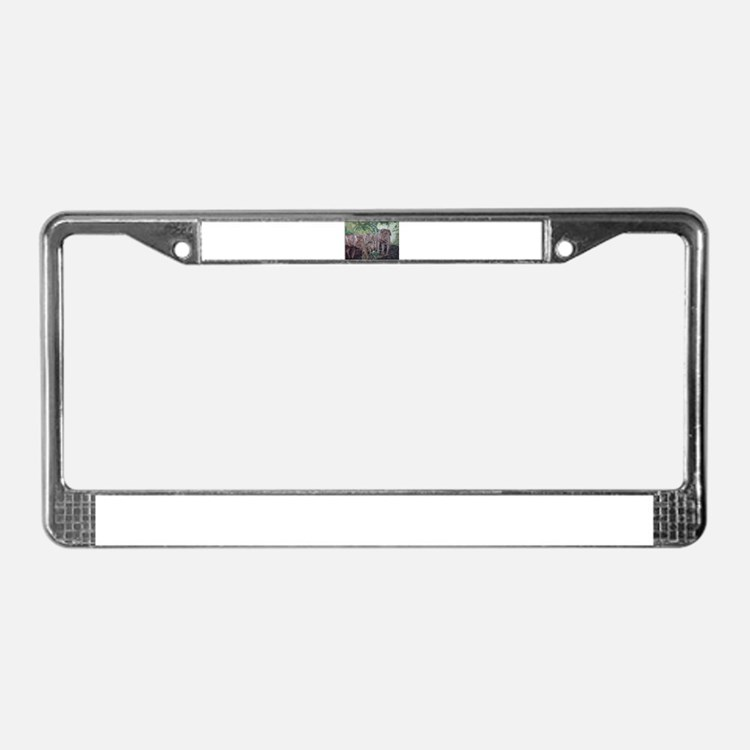 Freedom in the Forest License Plate Frame