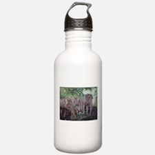 Freedom in the Forest Sports Water Bottle
