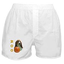Basset Hound Boo Boxer Shorts
