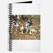 Cool Funny cubs Journal