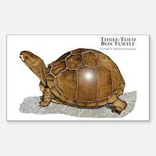 Three-Toed Box Turtle Rectangle Decal