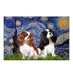 Starry Cavalier Pair Postcards (Package of 8)
