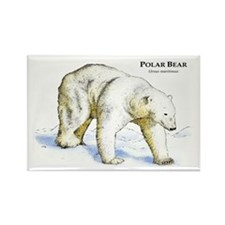 Polar Bear Rectangle Magnet