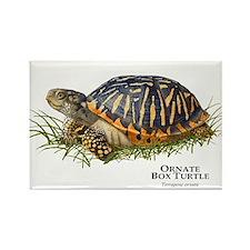 Ornate Box Turtle Rectangle Magnet