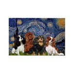 Starry / 4 Cavaliers Rectangle Magnet (10 pack)