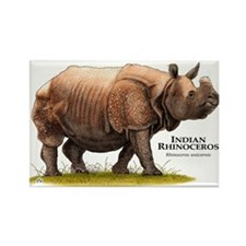 Indian Rhinoceros Rectangle Magnet