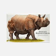 Indian Rhinoceros Rectangle Magnet