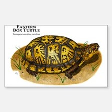 Eastern Box Turtle Sticker (Rectangular)