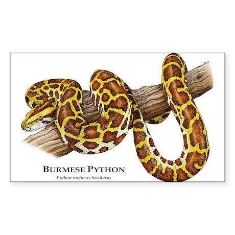 Burmese Python Rectangle Sticker