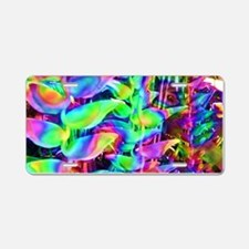 Floral Rainbow Aluminum License Plate