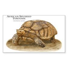African Spurred Tortoise Sticker (Rectangular)