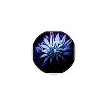 Blue Kush Mini Button