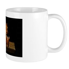 Fire Reflections Mug