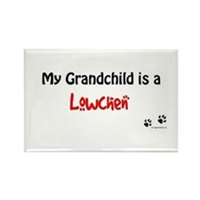 Lowchen Grandchild Rectangle Magnet