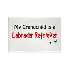 Lab Grandchild Rectangle Magnet